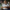 75 yaşındaki adam evinde ölü bulundu